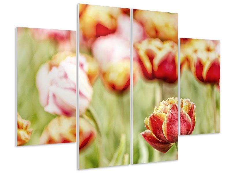Hartschaumbild 4-teilig Die Schönheit der Tulpe