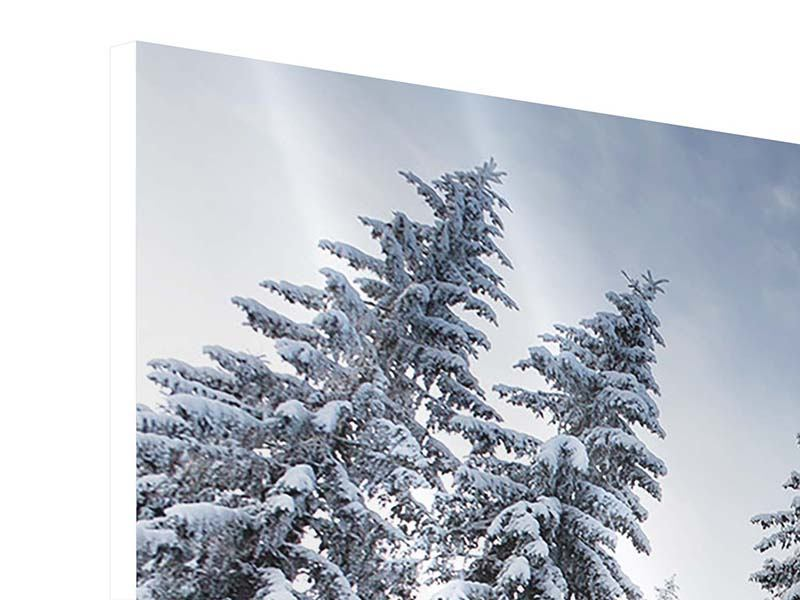 Hartschaumbild 4-teilig Wintertannen