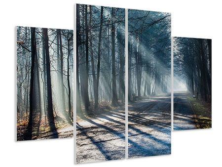 Hartschaumbild 4-teilig Wald im Lichtstrahl