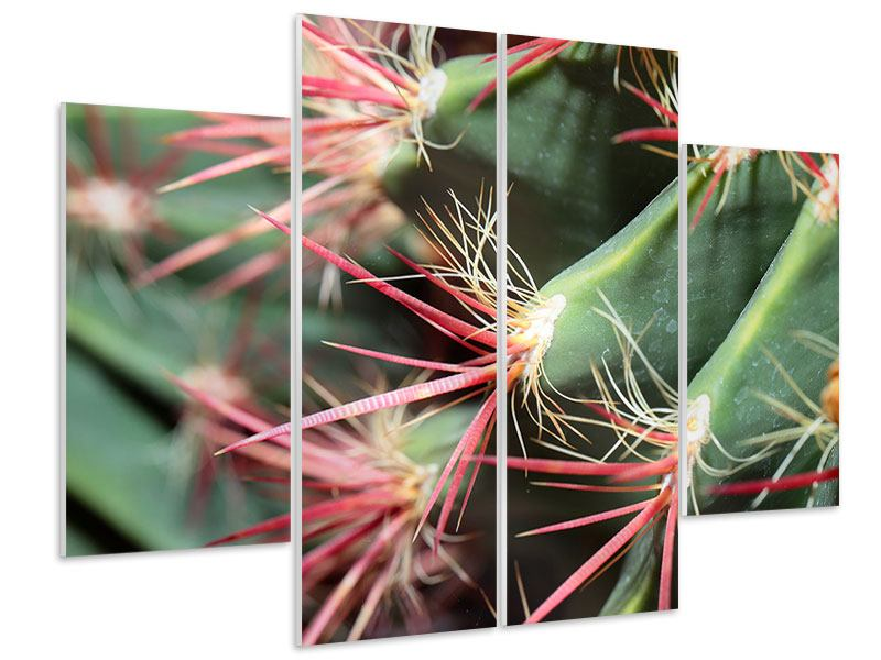 Hartschaumbild 4-teilig Die Kaktusblüte