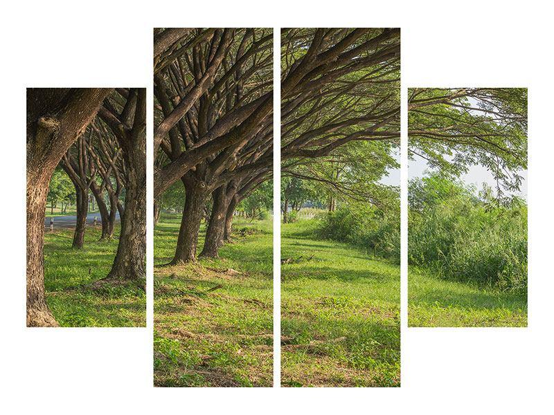 Hartschaumbild 4-teilig Alter Baumbestand