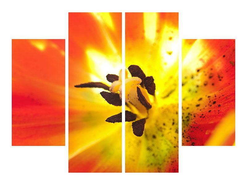 Hartschaumbild 4-teilig Die Narbe einer Tulpe XXL