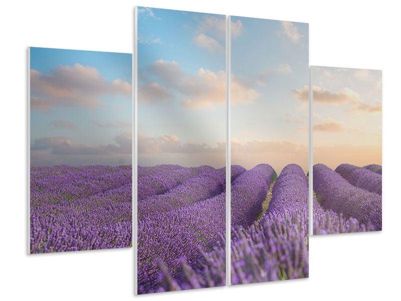 Hartschaumbild 4-teilig Das blühende Lavendelfeld