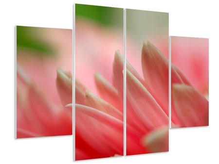 Hartschaumbild 4-teilig Close Up einer Blüte