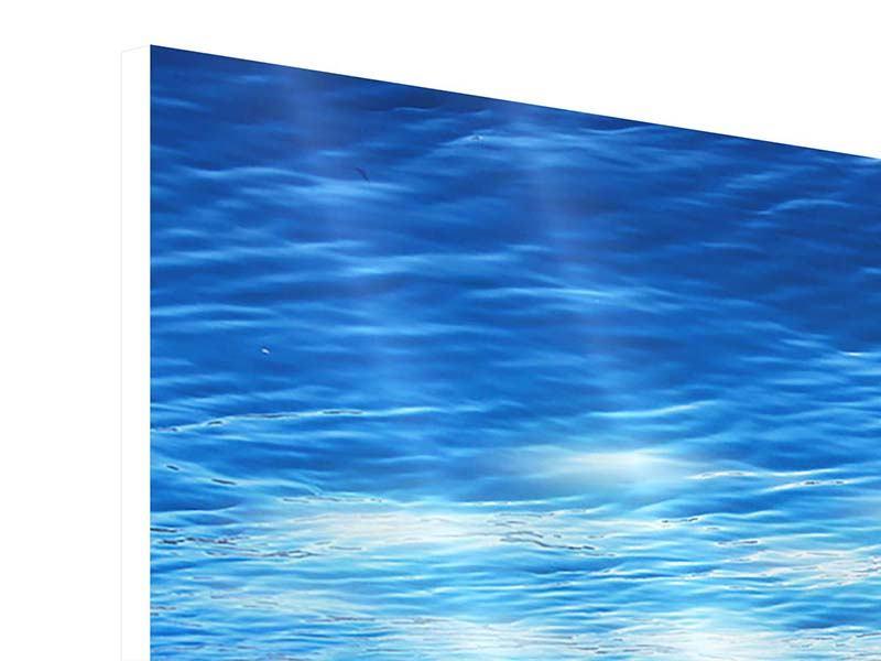Hartschaumbild 4-teilig Licht unter Wasser