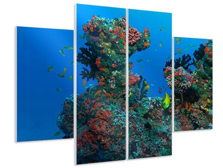 Hartschaumbild 4-teilig Die Welt der Fische