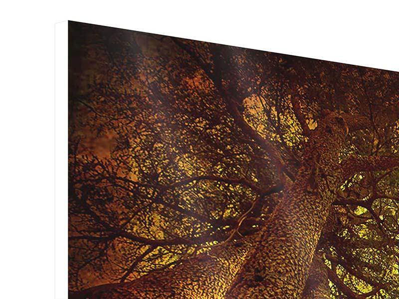 Hartschaumbild 4-teilig Cedar Baum