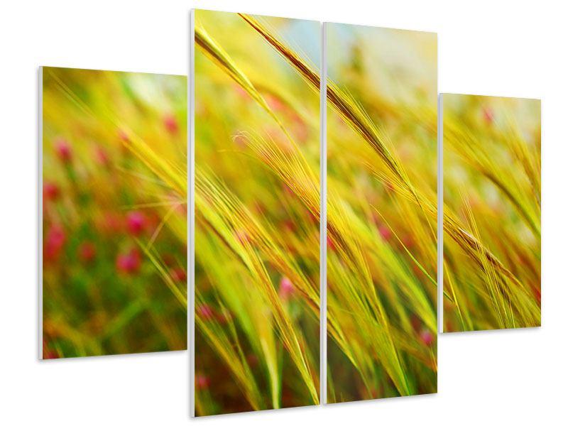Hartschaumbild 4-teilig Das Weizenfeld