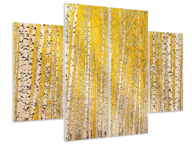 Hartschaumbild 4-teilig Der Birkenwald im Herbst