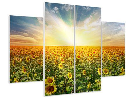 Hartschaumbild 4-teilig Ein Feld voller Sonnenblumen