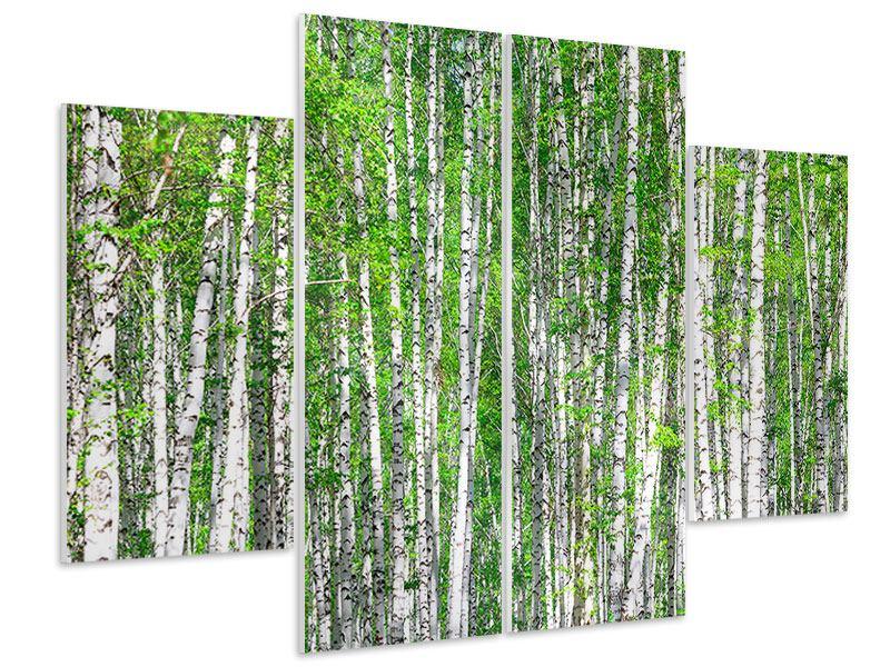 Hartschaumbild 4-teilig Der Birkenwald