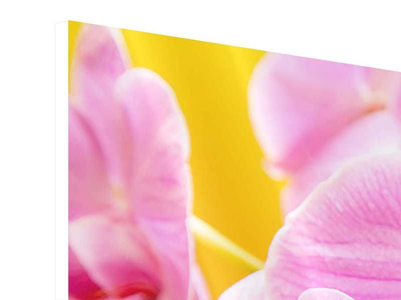 Hartschaumbild 4-teilig Königliche Orchideen