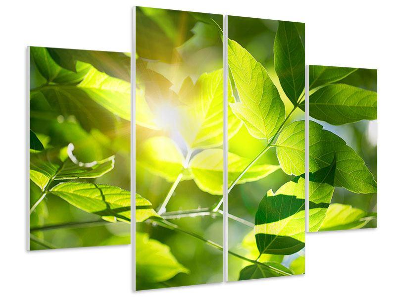 Hartschaumbild 4-teilig Es grünt so grün