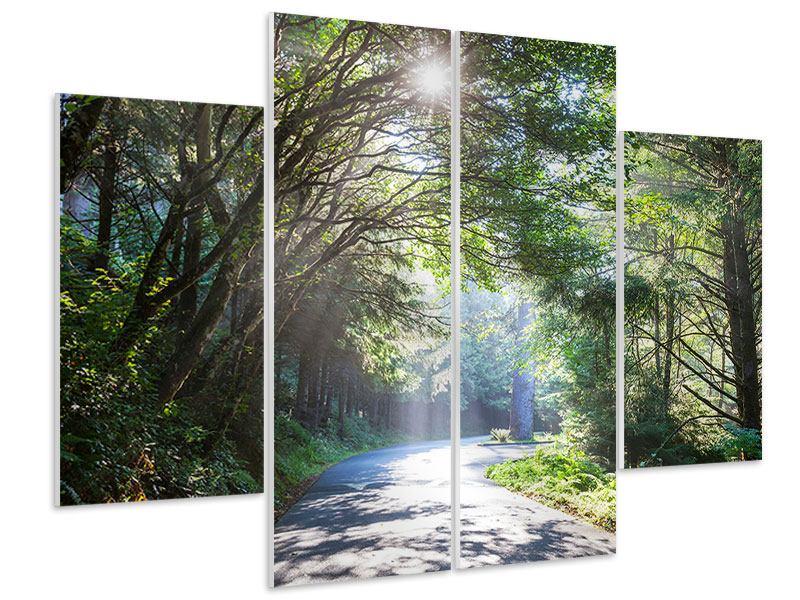 Hartschaumbild 4-teilig Sonniger Waldweg