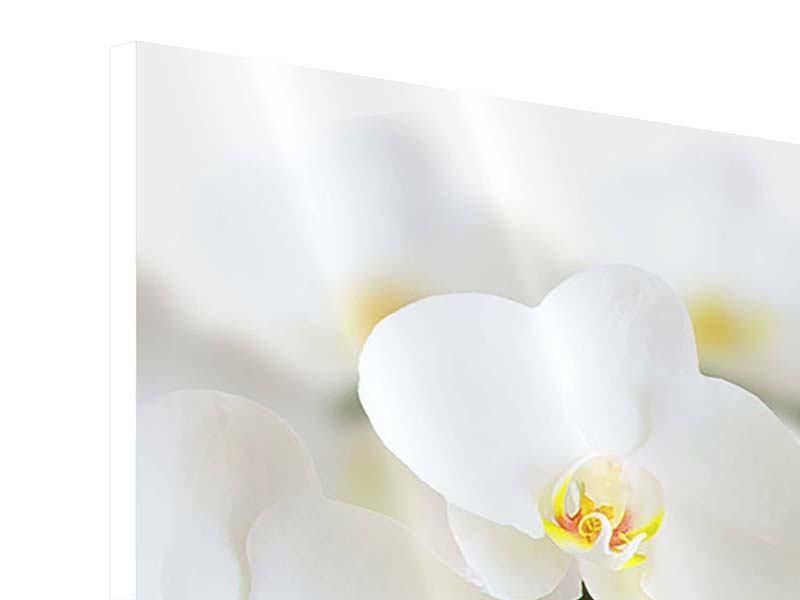 Hartschaumbild 4-teilig Weisse Orchideen