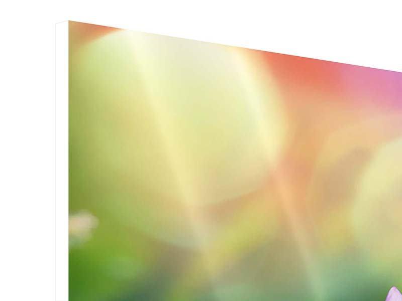 Hartschaumbild 4-teilig Colored Lotus