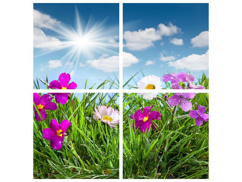Hartschaumbild 4-teilig Blumenwiese