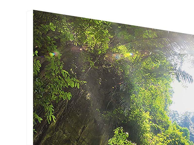 Hartschaumbild 4-teilig Lichtung im Dschungel