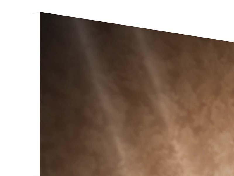 Hartschaumbild 4-teilig Das Volle Korn