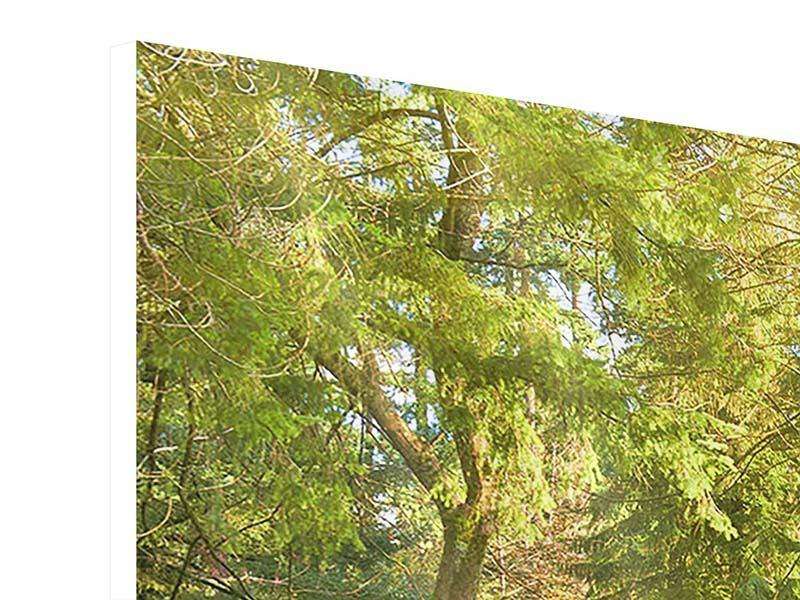 Hartschaumbild 4-teilig Im Park