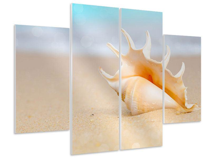 Hartschaumbild 4-teilig Die Muschel am Strand