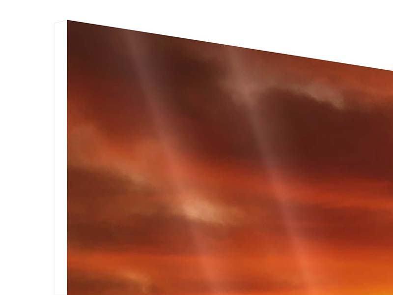 Hartschaumbild 4-teilig Der Weinberg bei Sonnenuntergang