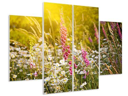 Hartschaumbild 4-teilig Sommerliche Blumenwiese