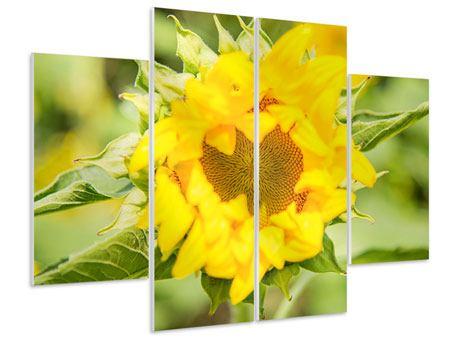 Hartschaumbild 4-teilig Wilde Sonnenblume