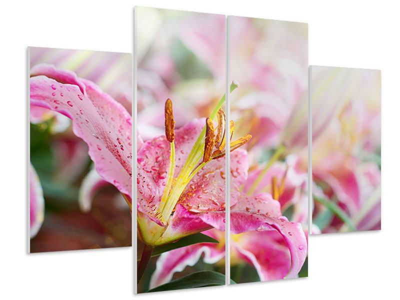 Hartschaumbild 4-teilig Lilien im Tau