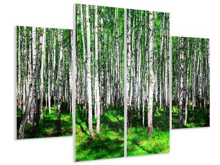 Hartschaumbild 4-teilig Sommerlicher Birkenwald