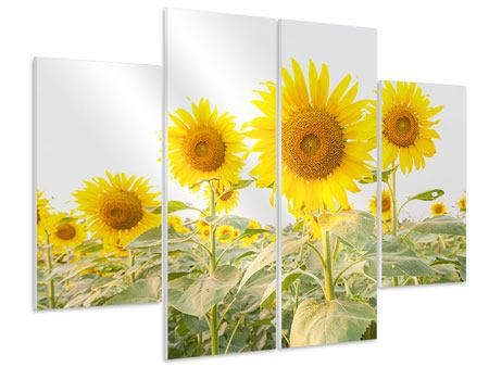 Hartschaumbild 4-teilig Das Sonnenblumenfeld