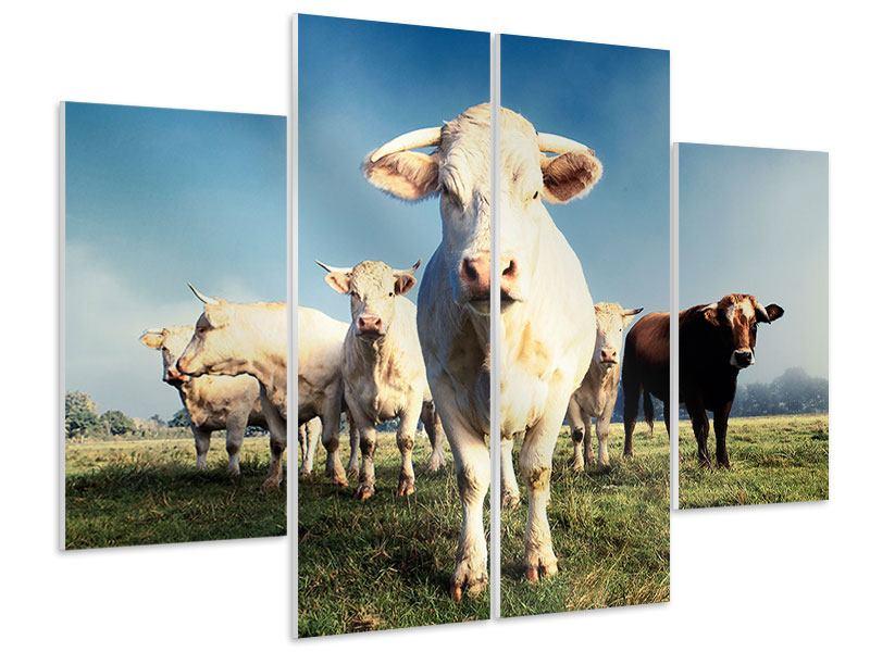 Hartschaumbild 4-teilig Kühe