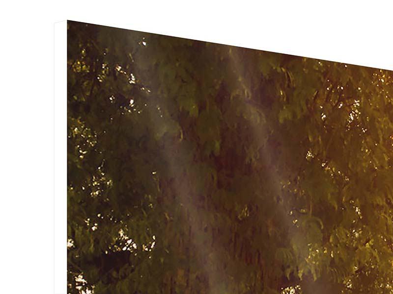 Hartschaumbild 4-teilig Romantik unter Bäumen