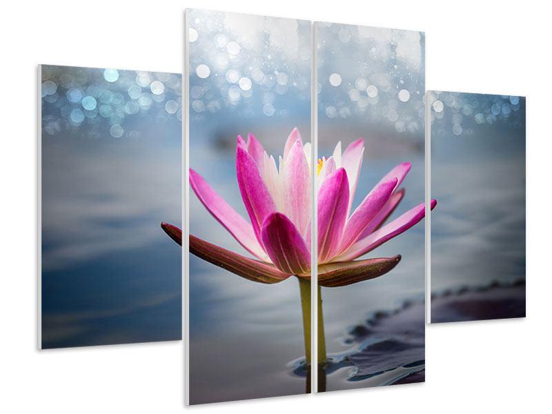Hartschaumbild 4-teilig Lotus im Morgentau