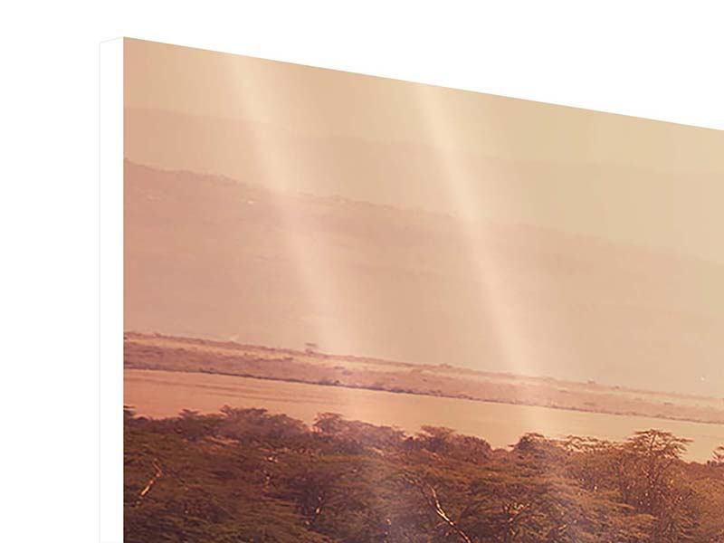 Hartschaumbild 4-teilig Malerisches Afrika