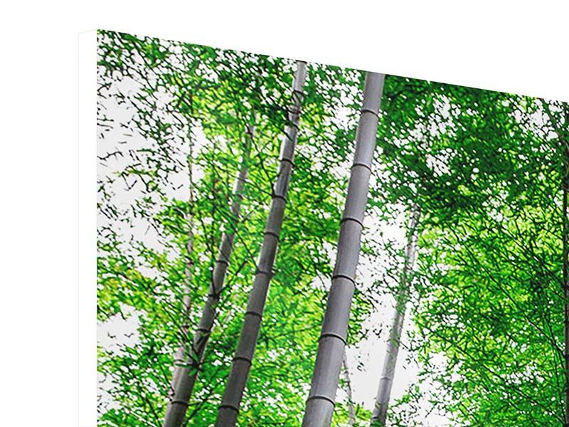 Hartschaumbild 4-teilig Bambuswald