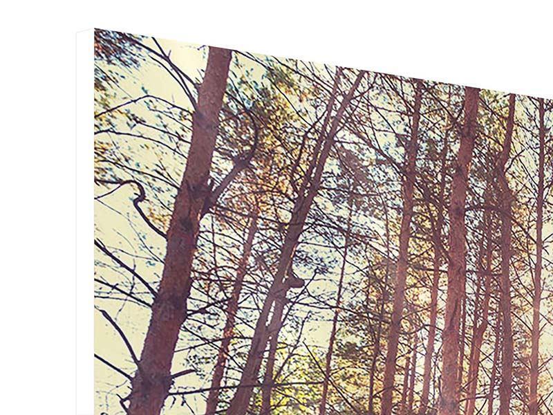Hartschaumbild 4-teilig Licht am Ende des Waldweges