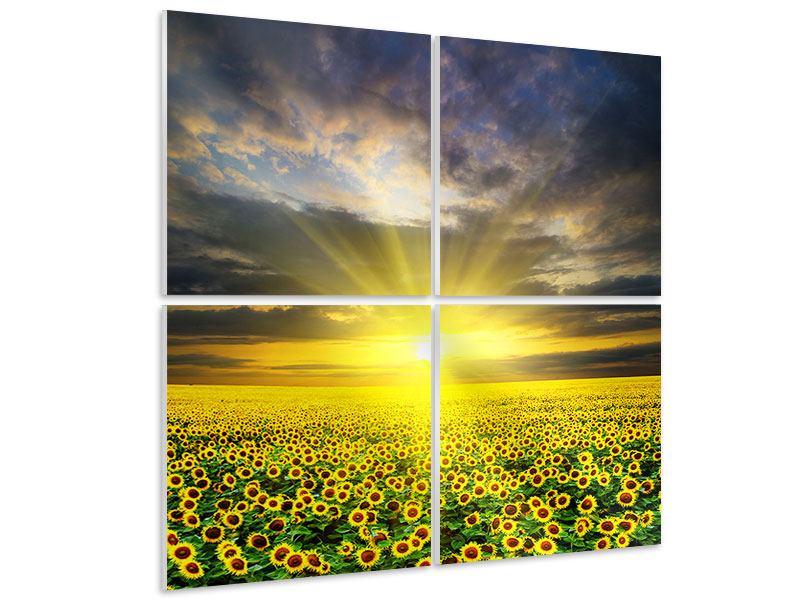 Hartschaumbild 4-teilig Abenddämmerung bei den Sonnenblumen