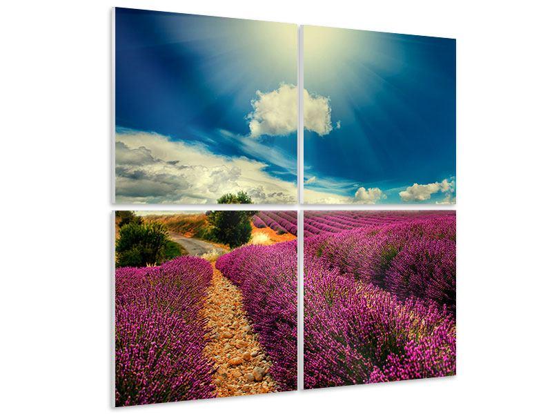 Hartschaumbild 4-teilig Das Lavendeltal
