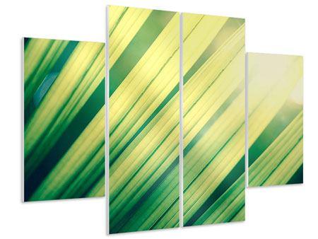 Hartschaumbild 4-teilig Beleuchtetes Palmblatt