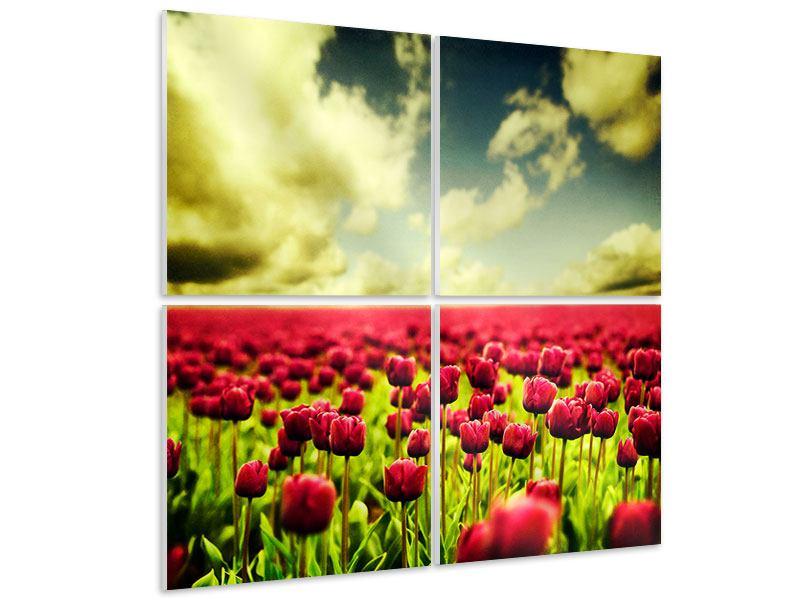 Hartschaumbild 4-teilig Ein Tulpenfeld