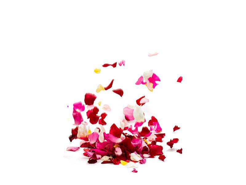 Hartschaumbild Auf Rosenblätter gebettet