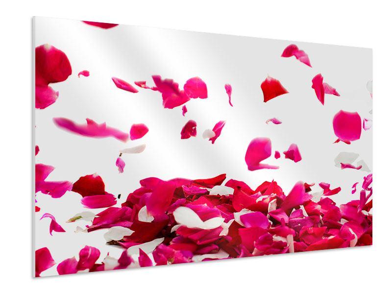 Hartschaumbild Für mich soll`s rote Rosen regnen