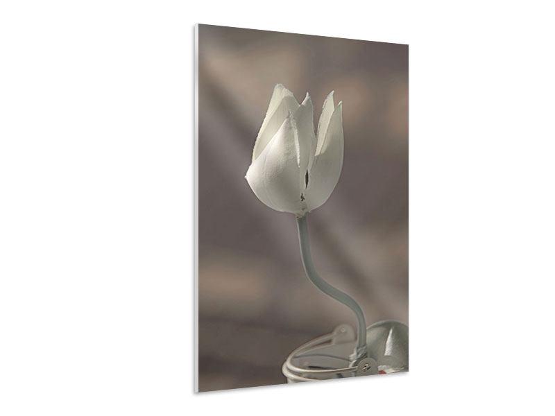 Hartschaumbild Die Tulpe in Sepia