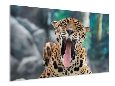 Hartschaumbild Leopardenkopf