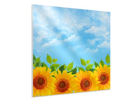 Hartschaumbild Sonnen Flower Power