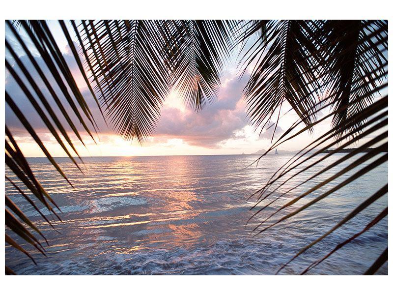 Hartschaumbild Unter Palmenblätter