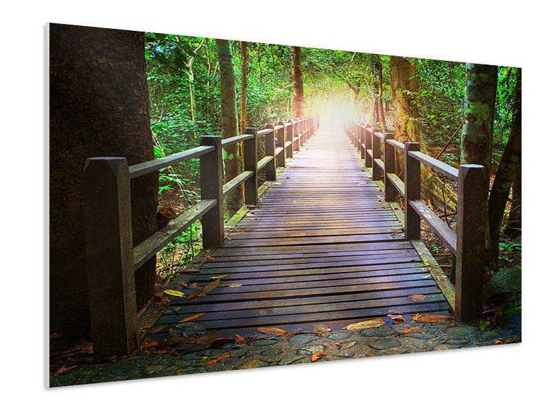 Hartschaumbild Die Brücke im Wald