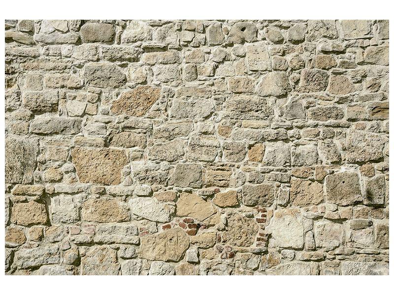 Hartschaumbild Naturmauer