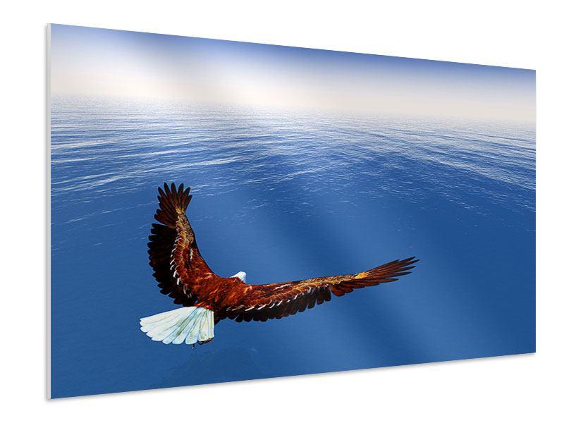 Hartschaumbild Der Adler